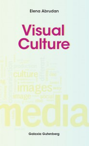 Visual Culture - Elena Abrudan